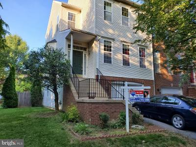 Gaithersburg Single Family Home For Sale: 20315 Battery Bend Place