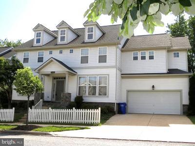 Clarksburg Single Family Home For Sale: 23406 Clarksridge Road