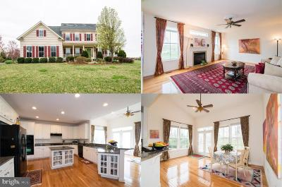 Laytonsville Single Family Home For Sale: 21714 Rolling Ridge Lane