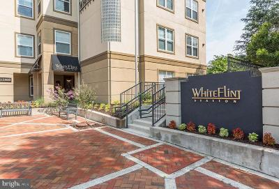 Rockville Condo For Sale: 11750 Old Georgetown Road #2526