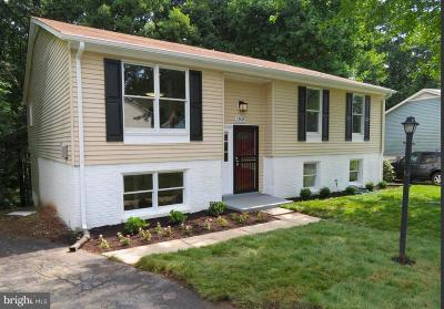 Gaithersburg Single Family Home For Sale: 17619 Lindstrom Court