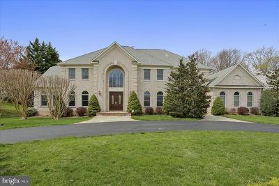 Potomac Single Family Home For Sale: 9908 Chapel Road
