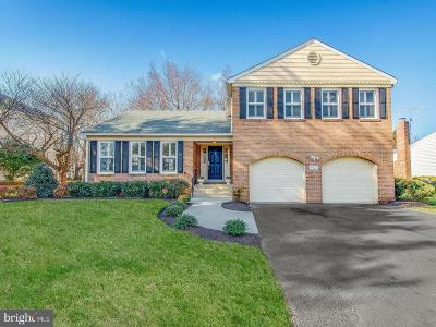 Brookeville, Olney Single Family Home For Sale: 4521 Thornhurst Drive
