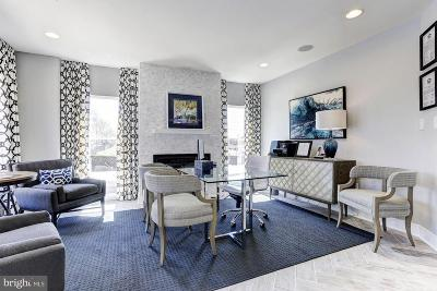 Rockville Townhouse For Sale: 1420 Piccard Drive