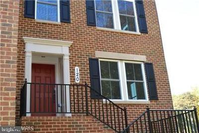 Gaithersburg Townhouse For Sale: 120 Liriope Place
