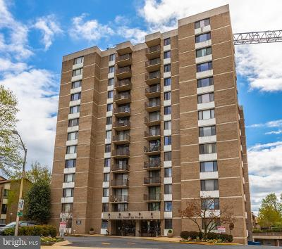 Rockville Condo For Sale: 4 Monroe Street #311