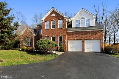 Clarksburg Single Family Home For Sale: 12610 Foreman Boulevard