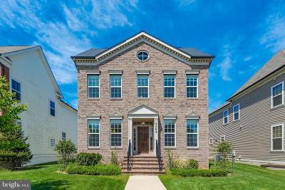 Silver Spring Single Family Home For Sale: 13503 Windy Meadow Lane