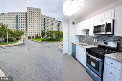 Rockville Condo For Sale: 10401 Grosvenor Place #711