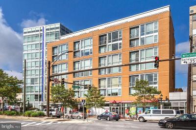 Bethesda Condo For Sale: 6820 Wisconsin Avenue #3010