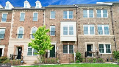 Gaithersburg Townhouse For Sale: 416 Blue Flax Place