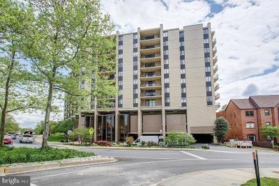 Chevy Chase Condo For Sale: 4242 East West Highway #1002