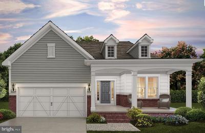 Germantown Single Family Home For Sale: 21933 Boneset Way