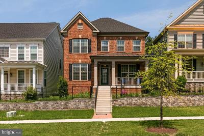 Clarksburg Single Family Home For Sale: 23109 Roberts Tavern Drive