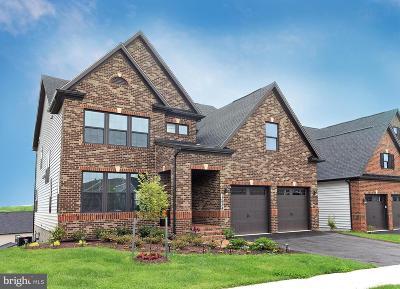 Clarksburg Single Family Home For Sale: 13934 Bufflehead Street