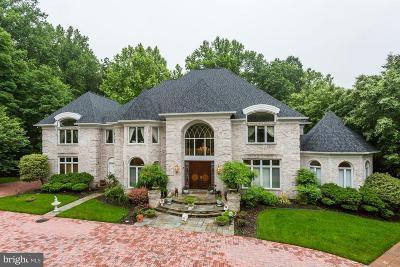 Potomac Single Family Home For Sale: 11712 Lake Potomac Drive