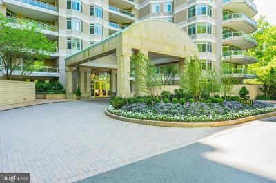 Chevy Chase Condo For Sale: 5630 Wisconsin Avenue #1002