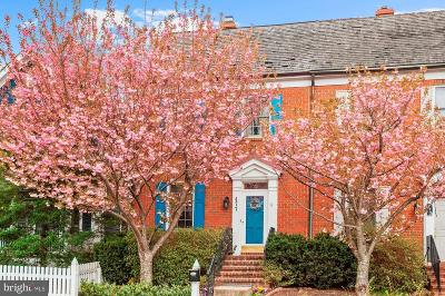 Gaithersburg Townhouse For Sale: 477 Tschiffely Square Road