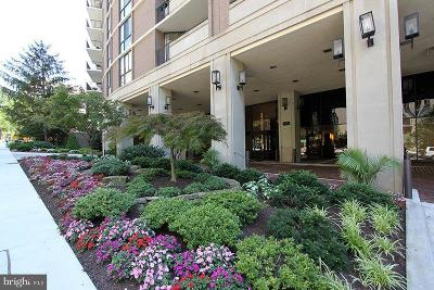 Chevy Chase Condo For Sale: 4620 N Park Avenue #1611