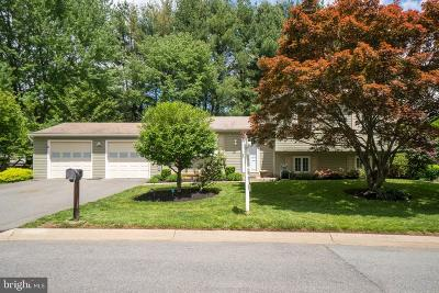 Gaithersburg Single Family Home For Sale: 19825 Cochrane Way