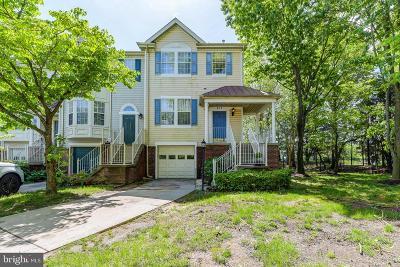 Gaithersburg Condo For Sale: 415 Beacon Hill Terrace