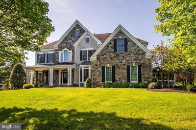 Darnestown Single Family Home For Sale: 15121 Rollinmead Drive