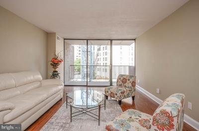 Rockville Condo For Sale: 4 Monroe Street #407