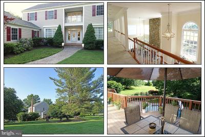 Darnestown Single Family Home For Sale: 13408 Haddonfield Lane