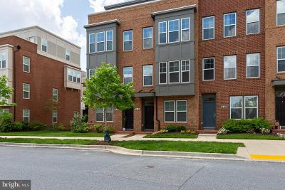 Gaithersburg Townhouse For Sale: 213 Kepler Drive