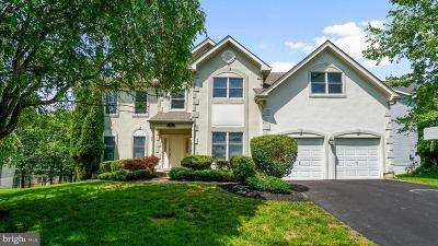 Gaithersburg Single Family Home For Sale: 307 Alderwood Drive