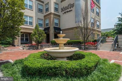North Bethesda Condo For Sale: 11800 Old Georgetown Road #1323