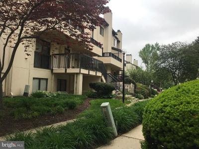 Gaithersburg Condo For Sale: 9830 Hellingly Place #104