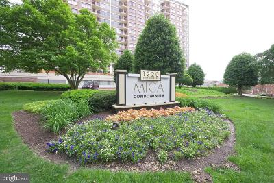 Silver Spring Condo For Sale: 1220 Blair Mill Road #301