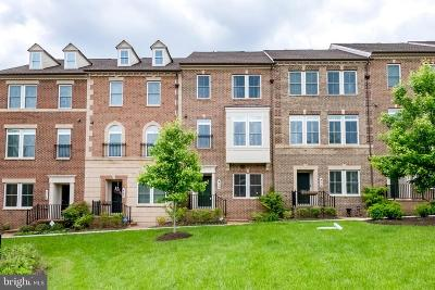 Montgomery County Townhouse For Sale: 416 Blue Flax Place