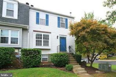 Montgomery County Condo For Sale: 25208 Tralee Court #V-5