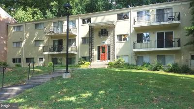 Montgomery County Condo For Sale: 10690 Weymouth Street #W-103