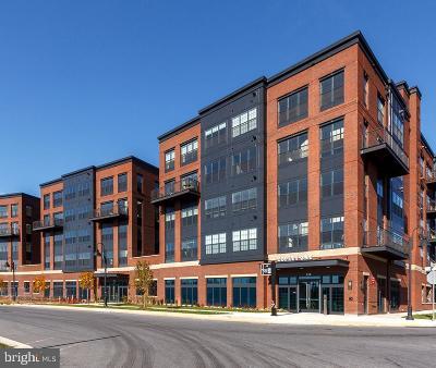 Gaithersburg MD Condo For Sale: $419,900