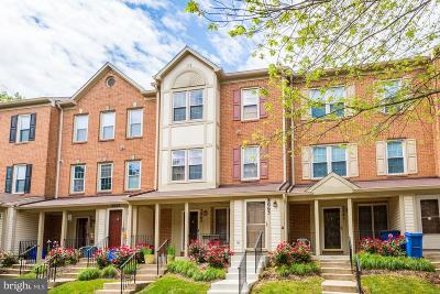 Montgomery County Condo For Sale: 2063 Westchester Drive #58