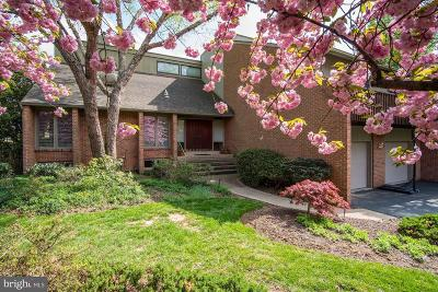 Potomac Single Family Home For Sale: 9612 Conestoga Way