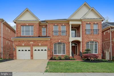Potomac Single Family Home For Sale: 11413 Patriot Lane