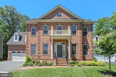 Montgomery County Single Family Home For Sale: 419 Greenebaum Lane