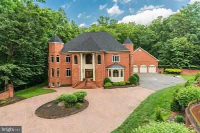 Potomac Single Family Home For Sale: 10407 Willowbrook Drive