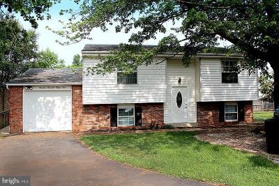 Germantown Single Family Home For Sale: 19084 Staleybridge Road