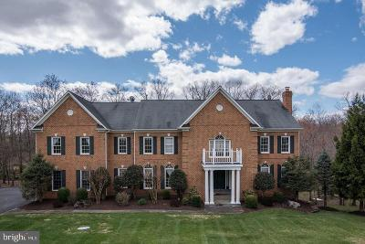 Potomac Single Family Home For Sale: 12508 Noble Court