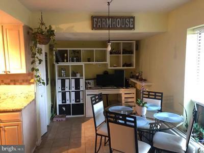 Germantown Condo For Sale: 13215 Dairymaid Drive #1