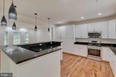 Burtonsville Single Family Home For Sale: 14100 Old Columbia Pike