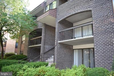 Gaithersburg Condo For Sale: 407 Christopher Avenue #48