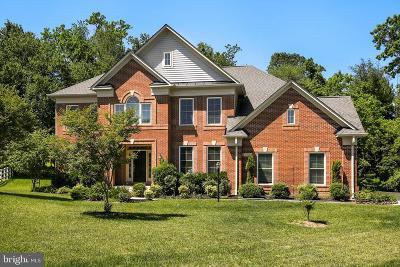 Potomac Single Family Home For Sale: 11408 Falls Road