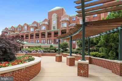 Rockville Condo For Sale: 22 Courthouse Square #411