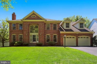 Gaithersburg Single Family Home For Sale: 105 Midsummer Drive